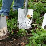 Comment devenir un jardinier paysagiste?