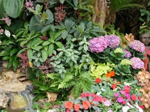 Créer ou recréer votre jardin avec Benoit Laurensac