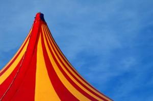 Les prouesses des artistes de cirque autour d'un arbre de Noël