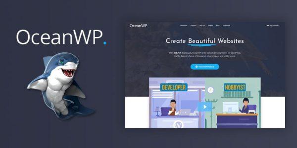 WordPress, le CMS le plus professionnel